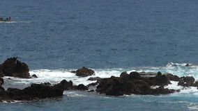 Waves crashing on lava rocks.Slow motion. stock video footage