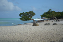 Waves Crashing Off Eagle Beach in Aruba Stock Photo