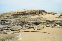 Waves crashing onto rocks Royalty Free Stock Image