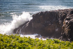 Waves crashing on rock with seabirds Stock Photos