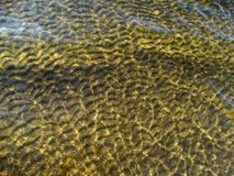 The pattern on the bottom of the river Stock Image