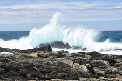 Waves crushing. Storms River Mouth, Tsitsikamma national park, South Africa royalty free stock images