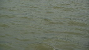Waves at the Danube River Water Surface on a windy winter day stock video footage
