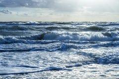 waves för textur för hav för illustrationsdesign naturliga Arkivbild