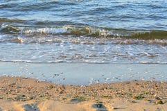 waves för wave för fokusförgrundshav Royaltyfri Fotografi