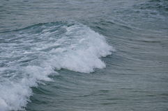waves för wave för fokusförgrundshav Arkivbild