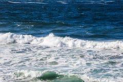 waves för wave för fokusförgrundshav Arkivfoton