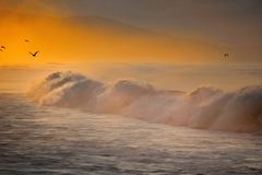 Waves. At first light of the sun the waves are breaking on the west coast stock photography