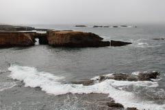 Waves on a foggy calif coastline Stock Images