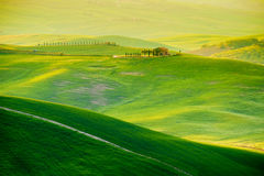 Waves hills, rolling hills, minimalistic landscape Royalty Free Stock Photography