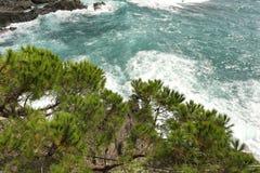 Waves hitting the shore Royalty Free Stock Photo