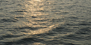 Waves of the Indian Ocean. Rays of the setting sun reflected on the waves of the Indian Ocean Royalty Free Stock Images