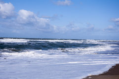 Waves on the island of Texel Royalty Free Stock Images