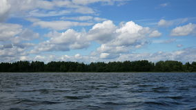 Waves on the lake in the forest. Blue sky and clouds stock video