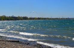 Waves on lake Ontario. Stock Photo