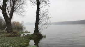 Waves on a lake during cold autumn when snowing stock video footage