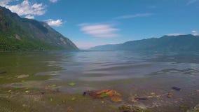 Waves on the lake Teletskoe stock footage