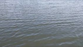 Waves on a lake  stock footage