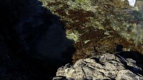 Waves lapping onto rock with seaweed in clear seawater and negative space. stock video footage