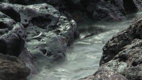 Waves on Lava Rocks stock video