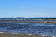 Waves move into Drayton Harbor on an early summer afternoon,  with a view of White Rock. Waves move into Drayton Harbor on an afternoon in early summer Royalty Free Stock Photos