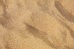 Free Waves Of Sand Royalty Free Stock Photos - 19750458