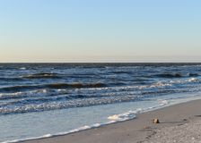 Free Waves On Clearwater Beach Royalty Free Stock Images - 115901449