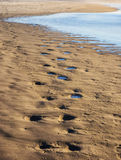 Waves på sandig strand Royaltyfri Bild