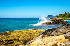 Waves of the Pacific Ocean crashing onto the rocky shoreline of the west coast of the island of Oahu. At the resort area of Ko Olina, in the island state of Royalty Free Stock Images