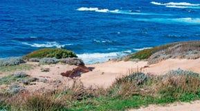 Waves in Porto Palmas. Blue wavy sea in Porto Palmas Royalty Free Stock Photography