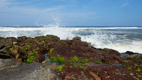 Waves pounding rocks on a beach Royalty Free Stock Images