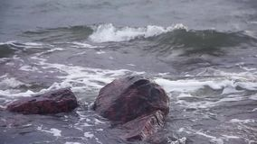Waves pounding on two rocks in the Baltic Sea. Waves pounding with force on two rocks in the Baltic Sea on early January afternoon in Helsinki, Finland stock video footage