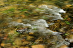 Waves in the river Stock Photography