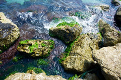 Waves on the rocks. Sea with waves on the rocks Royalty Free Stock Image