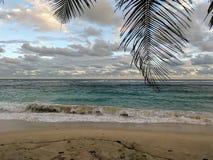 Waves on the Samoan beach. Beautiful blue waves on Samoan beach. Sand with footsteps stock photo