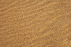 Waves in the Sand Stock Image