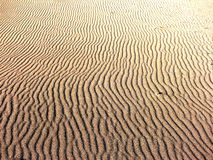 Waves in the sand. Royalty Free Stock Images