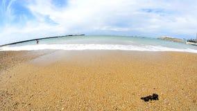 Waves on sand at beach shore. Cadiz, Spain stock video footage