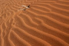 Waves of sand Stock Photography