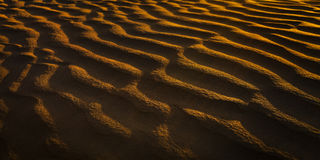 Waves in sand dunes at sunset Royalty Free Stock Photo