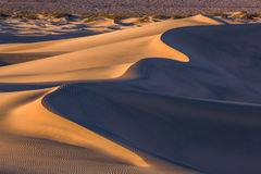 Waves of sand on top of the dunes. Sunrise. Desert in Mesquite F Royalty Free Stock Photos