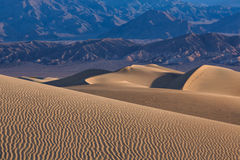 Waves of sand on top of the dunes. Sunrise. Desert in Mesquite F Royalty Free Stock Images