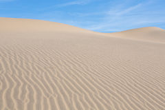 Waves of sand on top of the dunes. Sunrise. Desert in Mesquite F Stock Images