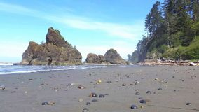 Waves and sandy shores of Ruby beach, Olympic National Park, USA stock footage