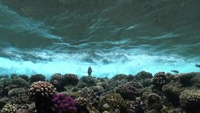 Waves of Sea Over the Coral Reef. View from underwater stock video