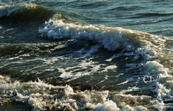 The waves on the sea Stock Image