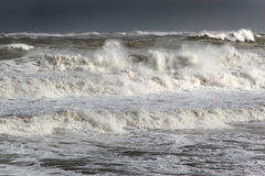Waves at sea in strong wind. Royalty Free Stock Photo