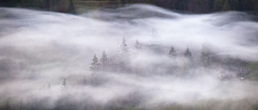 Waves of smoke in a mountain forest. Misty morning panorama. Royalty Free Stock Photos