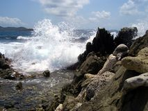 Waves som kraschar på stenig strand Arkivfoton