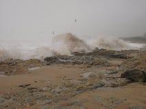 Waves splash on rocks on winter scenery Royalty Free Stock Photos